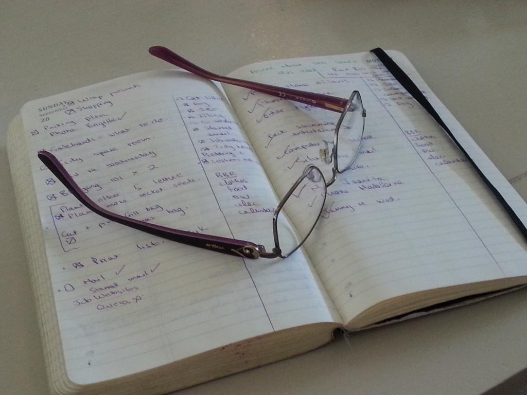 That Moleskine diary